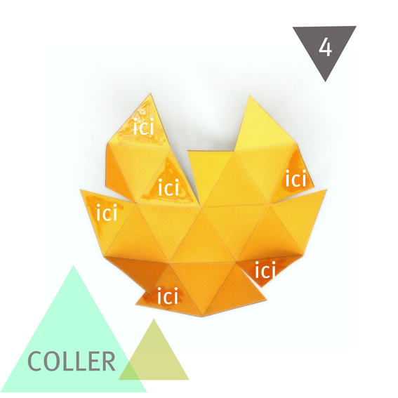 5-Coller
